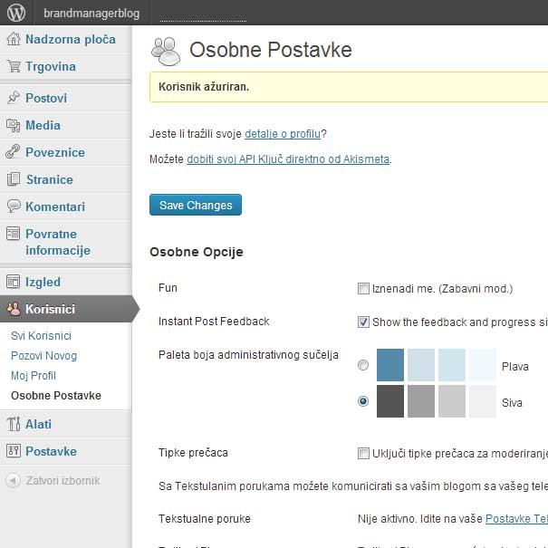 Izrada web stranica u WordPressu